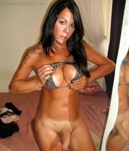 Transex Tranny Porno Live 108
